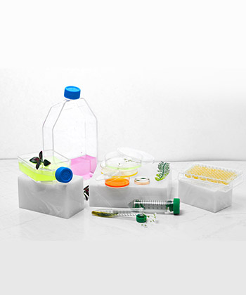 Cell Culture Products Manufacturer